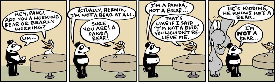 Not A Bear